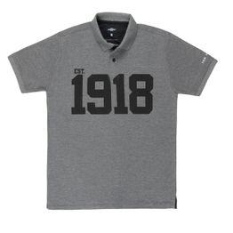 11694_Camisa-Polo-Masculina-Centenario-Pick-Up-100-Years-Cinza